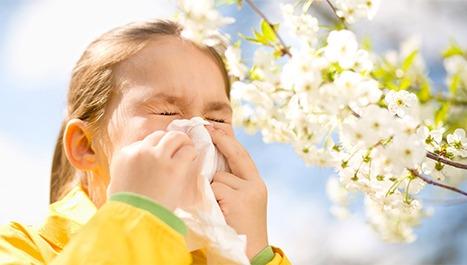 Alergija – proljetni neprijatelj